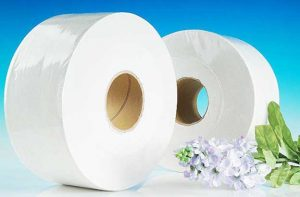 Mua giấy vệ sinh cuộn lớn giá rẻ ở TpHCM nên đến đâu?