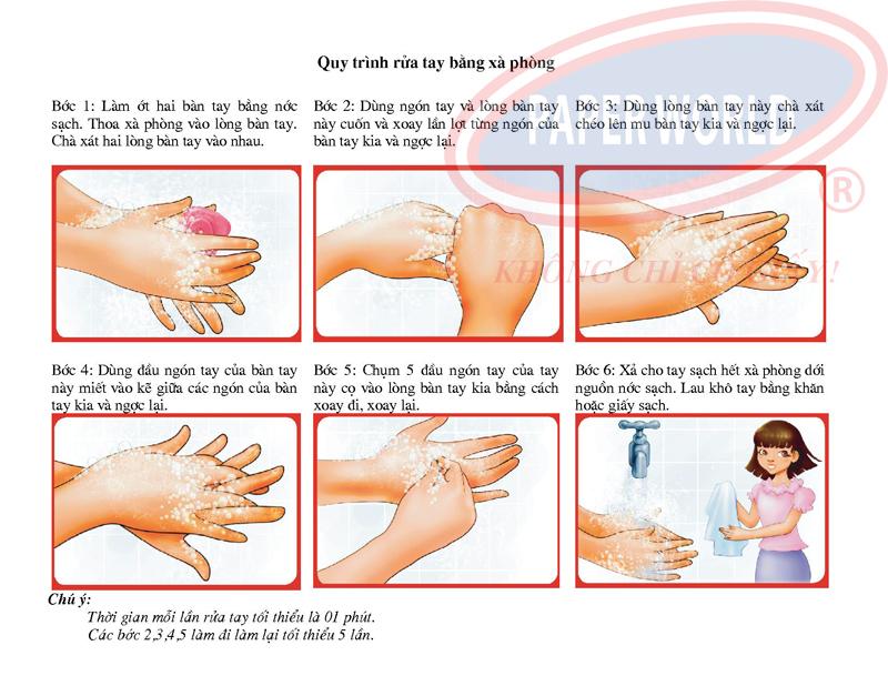 Quy trình rửa tay bằng xà bông hương hoa cỏ loại Caress5