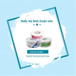 Các loại giấy vệ sinh trên thị trường nào ưu chuộng tại Thế Giới Giấy